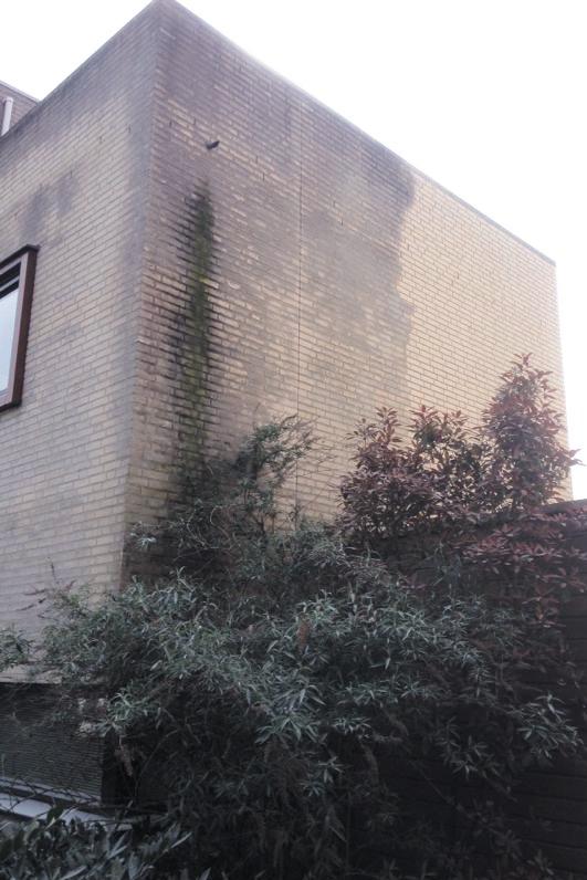 Woonhuis-Rijen-Judith-Leysterplein
